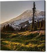 Skyline Meadows Sunstar Canvas Print