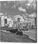Skyline Of Fort Worth Canvas Print