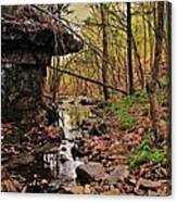 Slate Bottom Creek Canvas Print