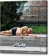 Sleeping Beauty On The High Line Canvas Print