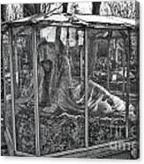Sleeping Beauty's Night Mare Canvas Print