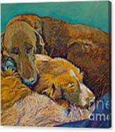 Sleeping Double In A Single Bed Canvas Print