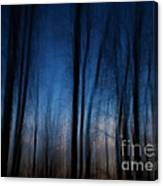 Sleepwalking... Canvas Print
