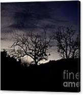 Sleepy Silhouette  Canvas Print