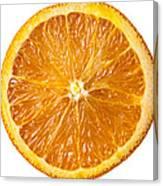 Sliced Orange Canvas Print