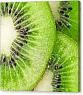 Slices Of Juicy Kiwi Fruit Canvas Print