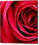 Slimline Red Canvas Print