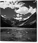 Slough Lake 5 Bw Canvas Print