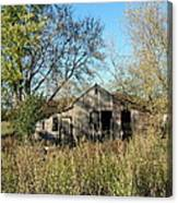 Small Abandoned Shed Canvas Print