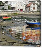Small Boats And Seagulls In Galicia Canvas Print