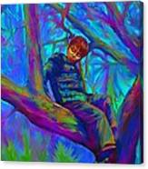 Small Boy In Large Tree Canvas Print