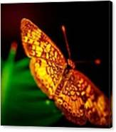 Small Butterfly Canvas Print