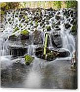 Small Cascade In Marlay Park Canvas Print