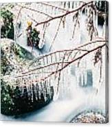 Small Creek Freezing Up Forming Icicles Canvas Print