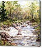 Small Falls In The Forest Canvas Print