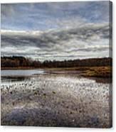 Small Lake Scene Canvas Print