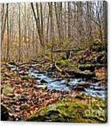 Small Pennsylvania Creek In Autumn Canvas Print