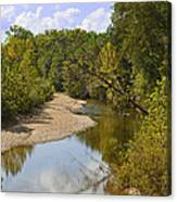 Small River 1 Canvas Print