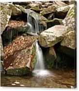 Small Rock Falls Canvas Print