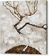 Small Tree In Late Autumn Canvas Print