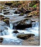 Small Waterfall In Western Pennsylvania Canvas Print