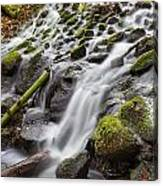 Small Waterfalls In Marlay Park Canvas Print