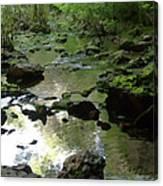 Smallin Creek Canvas Print