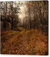 Smell Of Country  Canvas Print