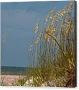 Smell The Salt Air Canvas Print