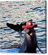 Smiley Dolphin Canvas Print