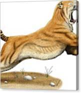 Smilodon Saber-toothed Tiger Canvas Print