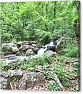 Smith Creek Downstream Of Anna Ruby Falls - 2 Canvas Print