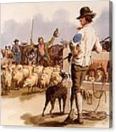 Smithfield Drover, From The Costumes Canvas Print