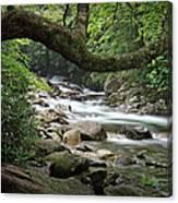 Smokey Mountain Stream. No 547 Canvas Print