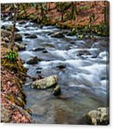 Smokey Mountain Stream Canvas Print