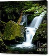 Smoky Mountain Falls Canvas Print