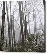 Smoky Mountain Hardwoods Canvas Print