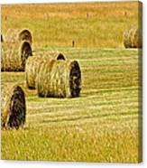 Smoky Mountain Hay Canvas Print