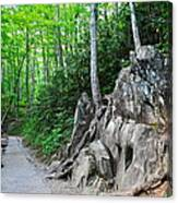 Smoky Mountain Hike Canvas Print