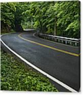 Smoky Mountain Road After Spring Rain E70 Canvas Print
