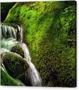 Smoky Mountain Stream And Boulders E223 Canvas Print