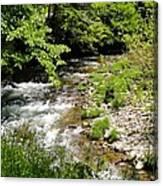 Smoky Mountain Stream Canvas Print