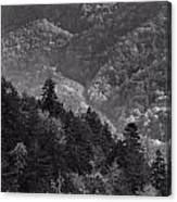Smoky Mountain View Black And White Canvas Print