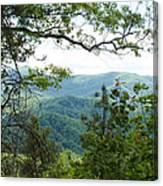 Smoky Mountain View Laurel Falls Trail Canvas Print