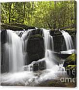 Smoky Mountain Waterfall - D008427 Canvas Print