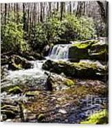 Smoky Mountain Waterfalls Canvas Print