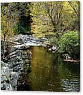 Smoky Mountian River Canvas Print