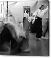 Smooth Aikido Canvas Print
