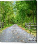 Smooth Paths Canvas Print