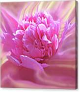 Smooth Pink Canvas Print